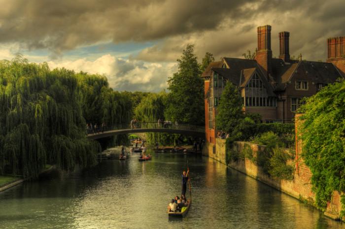 Eğitimin, Doğanın, Tarihin Ortak Adı; Cambridge